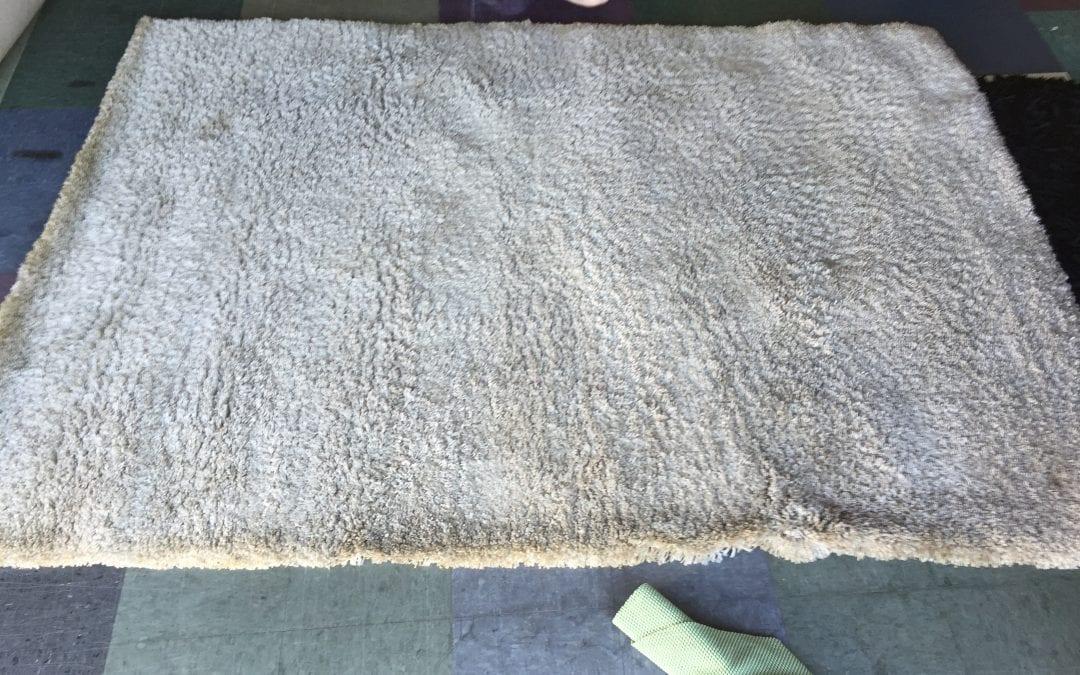 Area rug Cleaning Phoenix, AZ